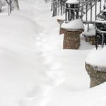 New Yorkin lumimyrsky